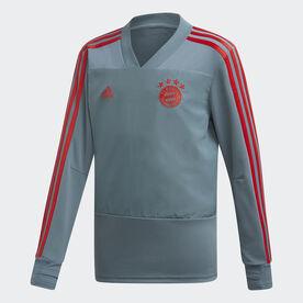 82d9302d2 adidas FC Bayern Goalkeeper Jersey - Grey
